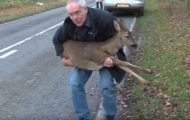 Mannen plukker opp en skadet hjort på veien. Det er da han innser den skremmende sannheten…