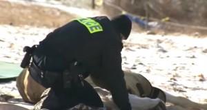 Denne hesten kollapset på isen – da gjør politiet dette! Helt UTROLIG.