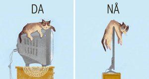 10 eksempler på hvordan den teknologiske utviklingen har forandret våre katters liv.