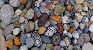 Det er noe som skjuler seg i disse steinene. Klarer du å se hva det er?