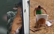 Da de dro ut på fisketur var dette det SISTE de hadde forventet å dra opp fra vannet.