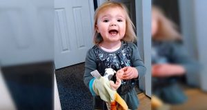 Pappa spør henne synge en kjent barnesang for kameraet, men forventet ikke DENNE responsen.