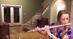 Denne hunden har noe han skulle ha sagt når han hører jentas fløytespilling.