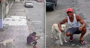 Video av løshund som tisser på en mann går viralt, men mannen overrasker alle og adopterer han.
