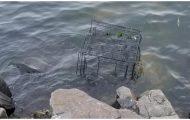 Hundeeieren finner et bur i vannet. Ved en nærmere titt, ser han noen som kjemper for livet.
