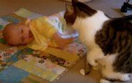 Den søteste videoen noensinne? Denne katten sitter barnevakt for babyen – og vi dåner!