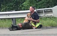 Hund nekter å forlate eierens side etter en dødelig trafikkulykke. Da går brannmannen bort og trøster ham.