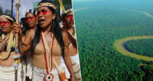 Amazonas-stamme saksøker for retten til 4000km2 regnskog. Dette ble resultatet.