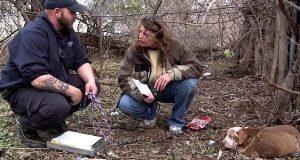 Folkesky løshund går fra syk og full av skabb til «perfekt» – takket være hennes redningskvinner.