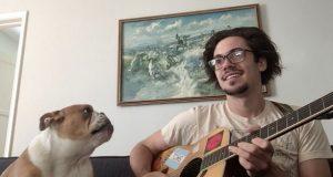 Bulldogen «synger» med når pappa spiller på gitar. For en duo!