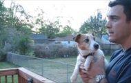 Hund blir bedårende gal av å høre at pappa snakker til henne om ekorn!