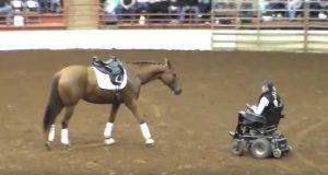 Hesten går mot kvinnen i rullestol. Få sekunder senere er publikum i ekstase.
