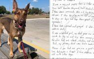 Hund funnet med flaskepost-beskjed på lapp festet i halsbåndet – får et helt nytt liv.