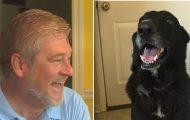 Savnet hund returnerer hjem – midt under TV-intervju med den sørgende familien.