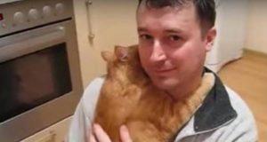 Hva denne katten gjorde, går direkte imot alle mytene som eksisterer om dette pelsdyret